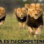 como analizar tu competencia