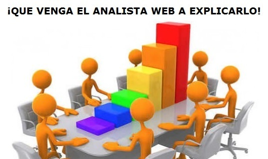 funcion del analista web