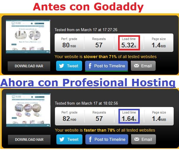 opiniones sobre profesional hosting en la velocidad
