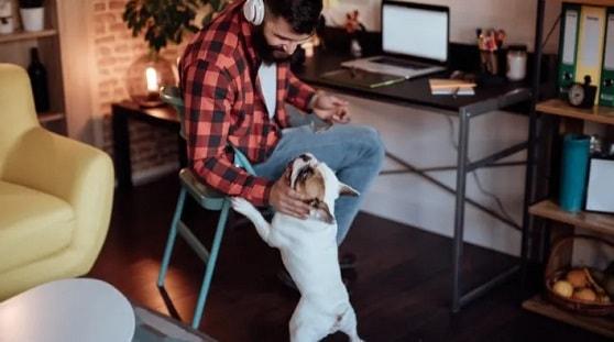 inconvenientes de trabajar en remoto desde casa